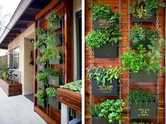 chain and ammo can vertical garden