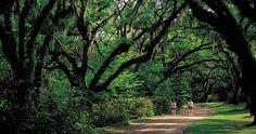 I will ride my bike through this park. South Carolina