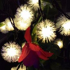 #savemajor at savemajor.com 7M Solar Christma... Happy #Thanksgiving http://savemajor.com/products/7m-solar-christmas-holiday-snow-flakes-led-string-lights-diy-snowball-outdoor-waterproof-party-and-event-decor-lightings?utm_campaign=social_autopilot&utm_source=pin&utm_medium=pin #blackfriday