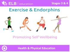 How does exercise affect our brain? What are endorphins and how can we use exercise to improve our mental health? Explore these questions and more with this interactive Prowise Presenter resource. Don't have Presenter? Don't worry, click the link to create a free account.