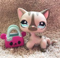 Fotos De Pet Shop Google Search Solo Niñas Pinterest Lps Dibujos De Pet Shop Y Con Color