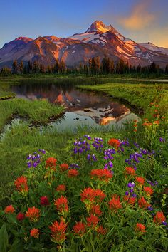 Images from the state of Oregon including the Columbia Gorge Scenic Area, Painted Hills, Oregon Coast, and Crater Lake by Kevin McNeal Photography