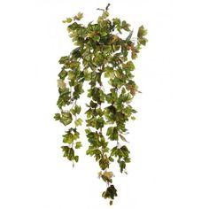Planta colgante de parra. Bonita planta colgante artificial parra de gran calidad y belleza. Tiene un tamaño de 90cm de largo. Sin maceta. Plants, Hanging Plants, Fake Flowers, Elegance Fashion, Pretty, Beauty, Flora, Plant