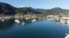 Picton, New Zealand. On the ferry that takes you from the South Island to the North Island