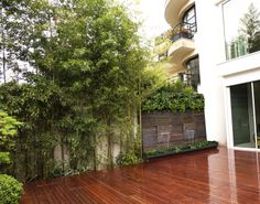 Outdoor Natura Wall on a wood terrace with vegetal. Peaceful water flow on natural schist stone. http://www.mur-eau.fr
