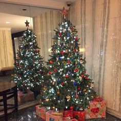 #DemDebate #NewYorkCity #Manhattan #StMark #Lobby #ChristmasTree #BriceDailyPhoto