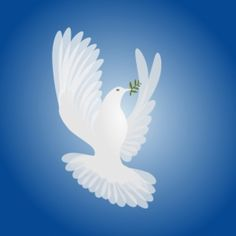 espírito pomba branca da paz | Baixar fotos gratuitas