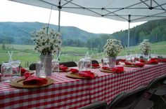 daisies in silver pails, colorado mountain wedding, outside tent reception, western style, rehearsal dinner, family gathering, red gingham check table cloth