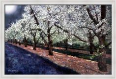 """""""Bridal Veil Trail"""" ~ © 2017 RC deWinter The moon shines down on a small park with a row of blooming hawthorns, which are also known as the May Tree, for the month in which they blossom. Reimagined & painted from a photo by Jay Mantri. Shown here as 21"""" x 32"""" framed print on Hahnemuhle Torchon paper, frame Gallery One White Scoop, finished size 23"""".63 x 34.63"""" Available as wall art in a wide variety of media, sizes &configurations. Pinterest prices not accurate."""