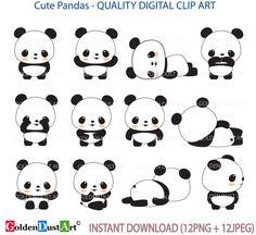 191 Best Panda images in 2019  1fbd7037cb7