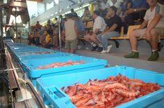 El pescado fresco de lonja valenciano adoptará una marca colectiva promovida por…