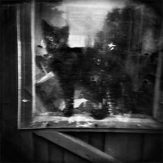 © Martin Bogren