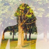 Beautiful Double Exposure Photos by Oliver Morris