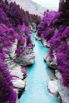 Jacaranda, Fairy Pool. Isle of Skye, Scotland