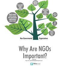 Non-governmental organizations are valuable tools in a thriving, equitable society