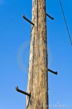 Old Telephone Pole With Rungs For Climbing
