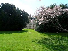 Brodie Castle gardens