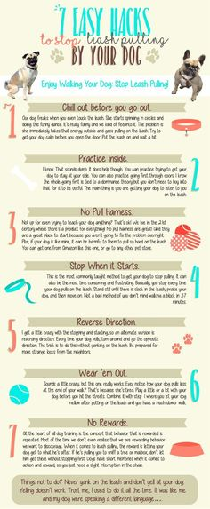 Check out these dog training tips on how to stop leash pulling. http://dogcoachinggenius.com/category/dog-training-tips/