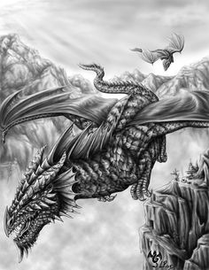 Dragon flight. i wish i could draw like this