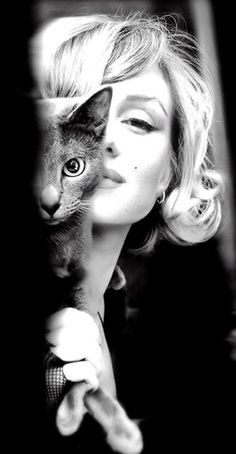 Marilyn Monroe with a Russian Blue. This picture makes me smile. That kitty looks just like my kitty Barbie. ( =