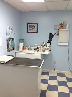 veterinary exam room - Google Search