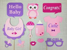 Girl Baby Shower Photo Props / Baby Owl Themed Shower / Baby Girl Photo /  Babyshower Party Supplies / SALE / FULLY ASSEMBLED / 12 Pc