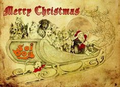 Introducing the new Soi Dog Christmas cards!  If you have any questions or wish to order, PLEASE EMAIL izzy@soidog-foundation.org  The cost PER CARD is UK £1.00 - USD $1.60 - AUD $1.80 - €1.30 + shipping  The cards feature actual dogs and cats from the Soi Dog shelter, sketched by renowned Singaporean artist Sandra Lee.  If you have any questions or wish to order, PLEASE EMAIL izzy@soidog-foundation.org