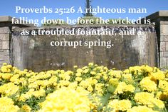 205 Best Book Of Proverbs 25 28 Images Bible Verses