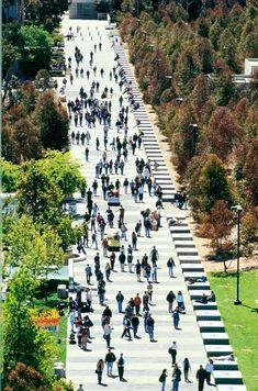 33 Best UCSD images