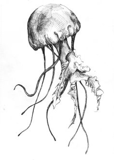 Inked Jellyfish Art Print