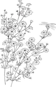 Embroidery Patterns Numbers an Embroidery Designs Trace Crewel Embroidery Kits, Floral Embroidery Patterns, Hardanger Embroidery, Paper Embroidery, Embroidery Designs, Embroidery Tattoo, Machine Embroidery, Simple Embroidery, Flower Embroidery