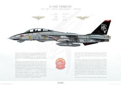 F-14D Tomcat VF-101 Grim Reapers, AD164 / 164342 / 2004- A2 Size - - Museum Quality Custom Aviation Prints