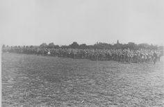 173rd East Ham Brigade RFA. Central Park, East Ham. 19 July 1915.