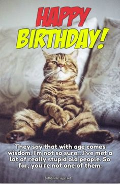 50 Happy Birthday Funny Pictures For Women Birthdays funny happy birthday images Happy Birthday Sister Funny, Funny Birthday Message, Happy Birthday Funny Humorous, Happy Birthday For Him, Birthday Wishes Funny, Happy Birthday Messages, Birthday Quotes, Funny Wishes, Women Birthday