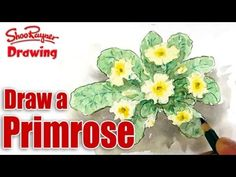 ▶ How to draw and paint Primroses - Spoken Tutorial - YouTube