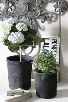 Jeanne d Arc Living Table Arrangements, Floral Arrangements, Garden Styles, Belle Photo, Vintage Decor, French Vintage, Green And Grey, Wedding Venues, Planter Pots