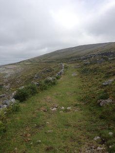 A green road in the Burren