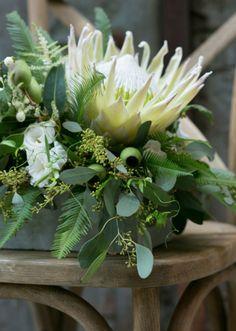 Wedding Flowers Native Australian Protea Bouquet 59 Ideas For 2020 Protea Wedding, Fern Wedding, Floral Wedding, Wedding Bouquets, Wedding Flowers, Protea Bouquet, Protea Flower, Ikebana Arrangements, Floral Arrangements