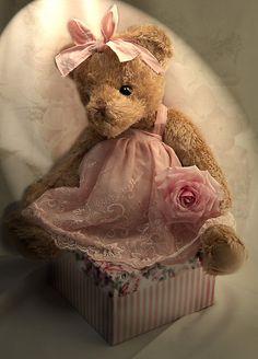 Teddy Bear ♥ . . .