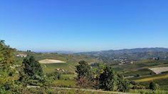 Weingegend bei Barolo im Piemont - http://olschis-world.de/  #Wein #Barolo #Piemont