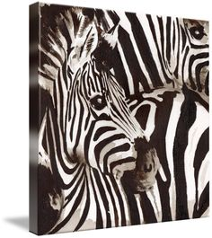 """""""The Zebra"""" by Nichola Artemenko, Sussex //  // Imagekind.com -- Buy stunning fine art prints, framed prints and canvas prints directly from independent working artists and photographers."""