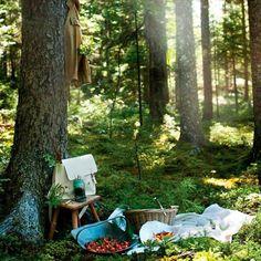 Crea momentos mágicos en los espacios verdes de tu propiedad, ¡es tan simple y al mismo tiempo tan perfecto!. Visita nuestra página web www.terra.net.co y llámanos al tel: (4)3860181.