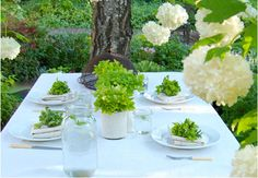 Summer Party Table Inspiration