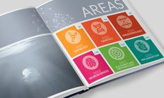 Instituto de Investigación Sanitaria de Santiago de Compostela - Annex - Annual report 2015 IDIS