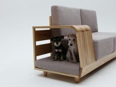 couch + dog bed