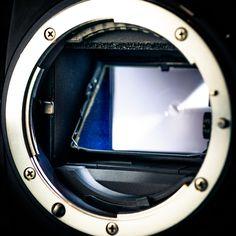 Up close to the Nikon lens mount and mirror box Nikon, Mirror Box, Aperture, My Photos, Lens, Openness, Klance, Septum, Lentils