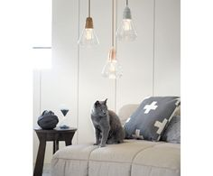 http://www.beaconlighting.com.au/shop-by/whats-new/ando-1-light-pendant-in-concrete-glass.html