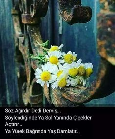 Yurek sizim.... Islam, Thunder, Istanbul, Acupuncture, Quotes
