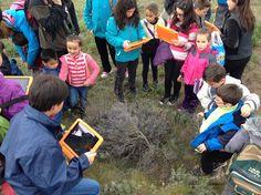 10 escuelas que emplean pedagogías activas en España | Educación 3.0
