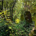 London's Garden Cemeteries